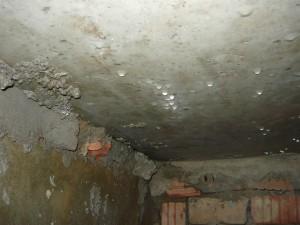Потолок подвала с конденсатом