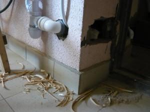 Подсоединение сифона к канализационной трубе