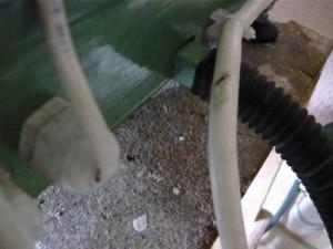 Подсоединение к сливу гофрированного  шланга