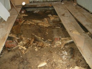 Лаги и подложки под них полностью уничтожены