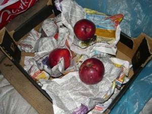 Вид на яблоки, хранящиеся завернутыми в бумагу
