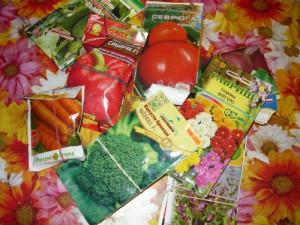 Семена, подготовленные к дачному сезону