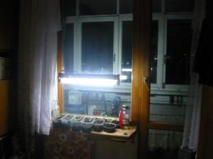 Размещение рассады на подоконнике окна в балконном блоке