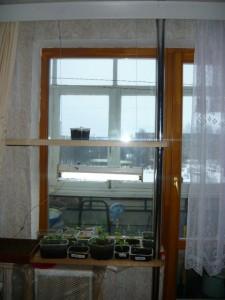 Вид на смонтированную подставку под рассаду на оконном проеме балконного блока