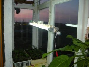Подвешанный светильник на балконе над рассадой