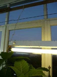 Второй светильник, подвешенный над рассадой на перекладине, на балконе