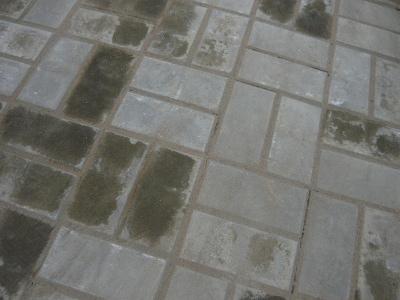 Окончательный вид уложенной плитки