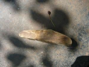 Клин для фиксации лезвия косы на косовище