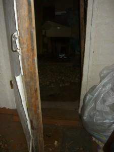 Картофель на карантине в закрытом помещении