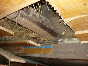Балка в потолке, мешающая постройке трубы для печи
