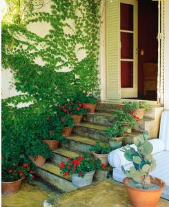 Оформление лестницы цветами в горшках