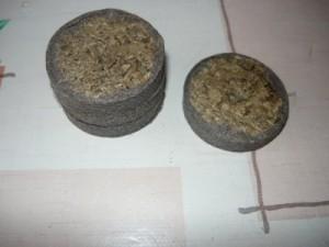 Вид на таблетки для дыни